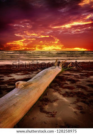 Sunset on beach. - stock photo