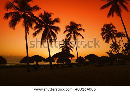 sunset on caribbean beach with silhouette of palms - stock photo