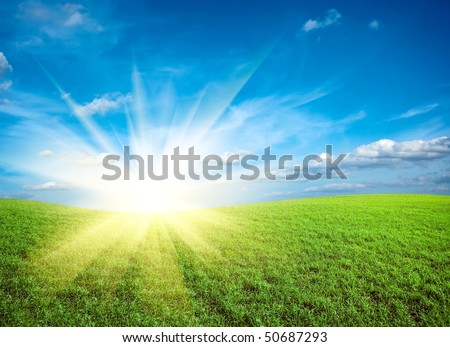 Sunset on field of green fresh grass under blue sky - stock photo