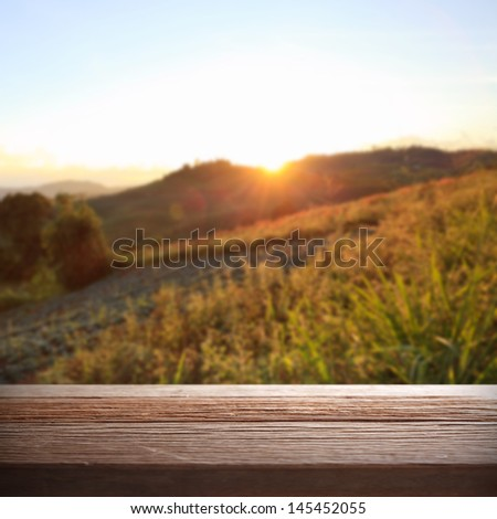 Sunset on forest and wooden board in summer - stock photo