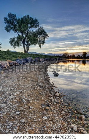 Sunset on rocky lake shore with large tree in distance - stock photo