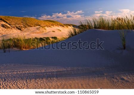 sunset on sand dunes of the desert - stock photo