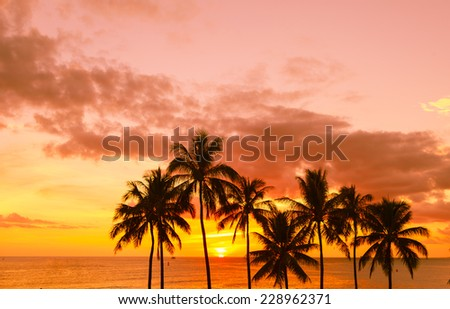 Sunset on the beach, Hawaii, USA - stock photo