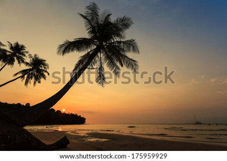 sunset on the beach of tropical sea