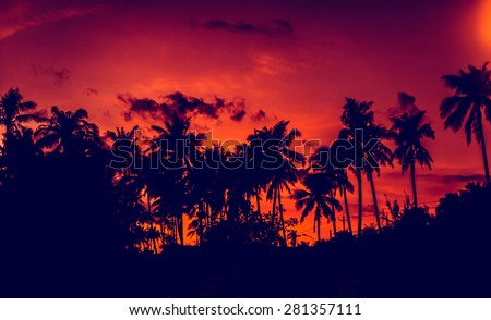 Sunset on the beach. Resort. Background - stock photo