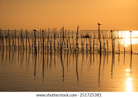 Sunset on the calm waters of Albufera lagoon, Valencia, Spain - stock photo
