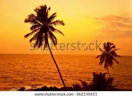 Sunset on the Ocean - stock photo