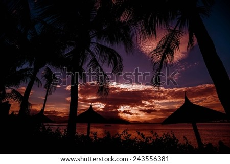 Sunset on the sea with palm trees - stock photo