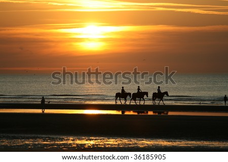 Sunset on the seashore with silhouettes or people riding horses and walking on the coast. - stock photo