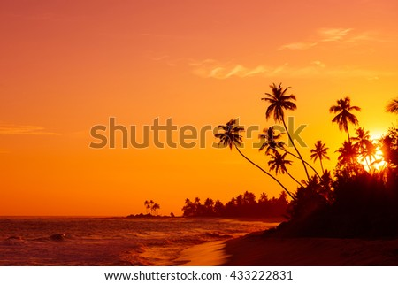 Sunset on tropical beach