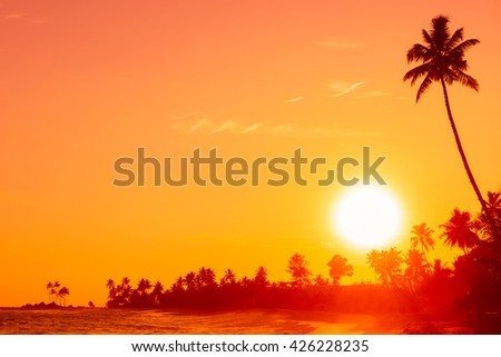 Sunset on tropical beach with palm tree silhouette and shining sun circle - stock photo