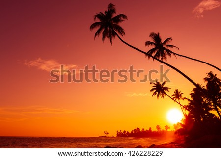 Sunset on tropical beach with palm trees silhouettes and shining sun circle - stock photo