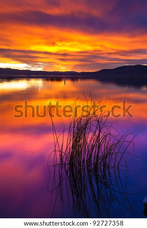 Sunset on Utah Lake with Patch of Reeds in the Foreground - stock photo