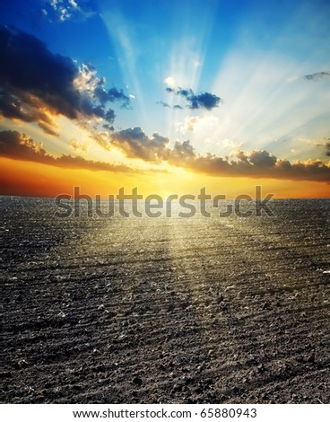 sunset over black field - stock photo
