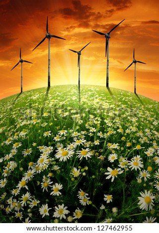 sunset over blooming meadow with wind turbines - stock photo