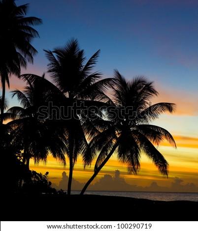 sunset over Caribbean Sea, Turtle Beach, Tobago - stock photo