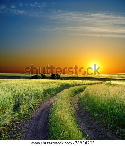 sunset over field - stock photo