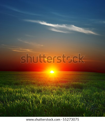 Sunset over field with green grass and sky with clouds - stock photo