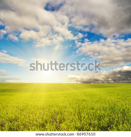 sunset over green field - stock photo