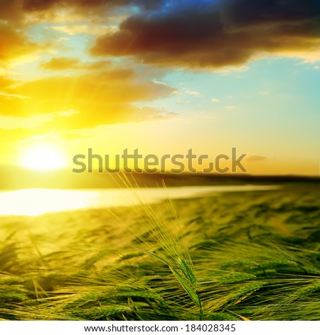 sunset over green field near water - stock photo