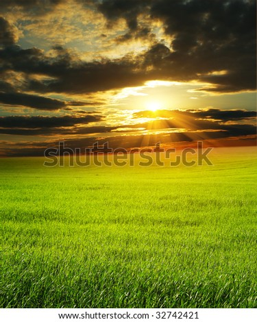 Sunset over green rural field