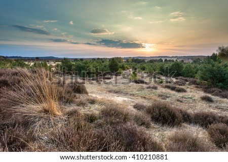 Sunset over Heather and sand on the Ginkelse Hei in Planken Wambuis, Veluwe, Netherlands during Sunset - stock photo