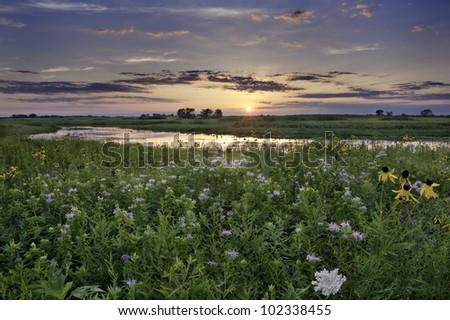 Sunset over Illinois This photo is taken at an open field in Illinois. - stock photo