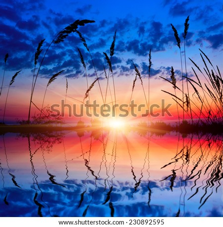 sunset over lake. view though grass on bank - stock photo