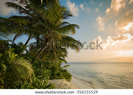 Sunset over palm trees on tropical island beach, beautiful clouds and view over wide ocean - stock photo