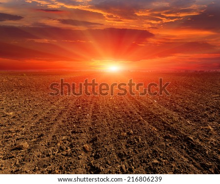 sunset over plugged field - stock photo