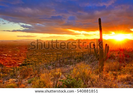 Sunset over suburb of Tucson.