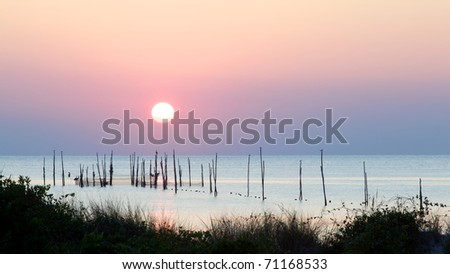 Sunset over the Chesapeake Bay revealing birds resting on logs holding fish nets hanging into the water.