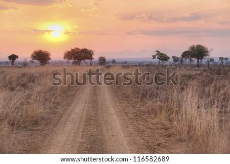 Sunset over the dry African Savannah, Mikumi, Tanzania - stock photo