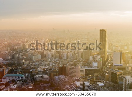 Sunset over the endless city of Tokyo - stock photo