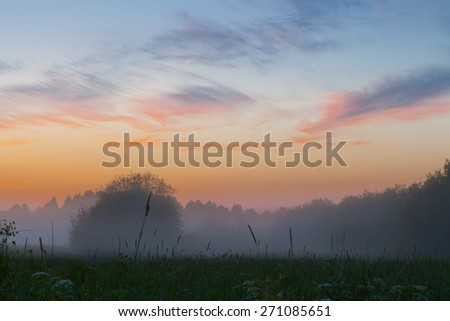 Sunset over the meadow in a foggy summer day - stock photo