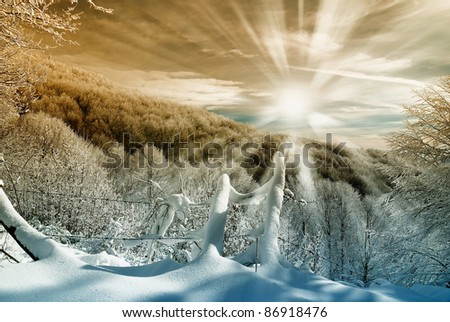 sunset over the snowy forest in  italy - stock photo