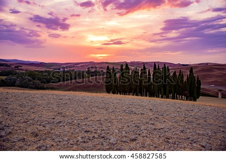 sunset over the Tuscan cypress trees in the Val d'Orcia in the summer of Montalcino in Tuscany countryside near Siena.in the photo are no places or people recognizable - stock photo