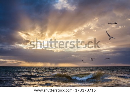 Sunset over water with wave breaking in the foreground, and seagulls flying in the sky - stock photo