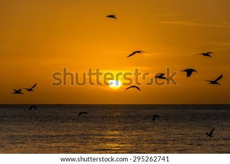 Sunset scene at Florida Keys - stock photo