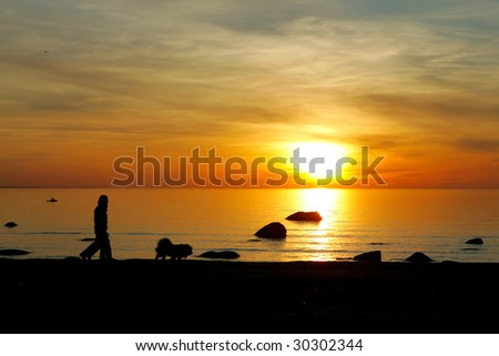 sunset sea silhouette of people walking with the family dog - stock photo