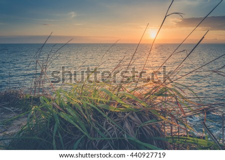 Sunset seascape with grass foreground, At Samed island,THAILAND (Vintage filter effect used) - stock photo
