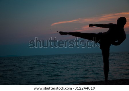 Sunset silhouette of a man practicing martial arts