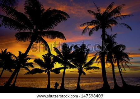 Sunset Silhouette with Coconut Palms and Guitar player.