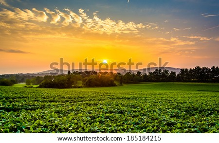 Sunset sky over the Piegon Hills and farm fields, near Spring Grove, Pennsylvania. - stock photo