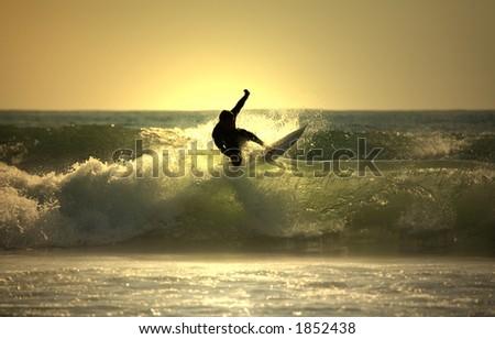 Sunset surfer - stock photo
