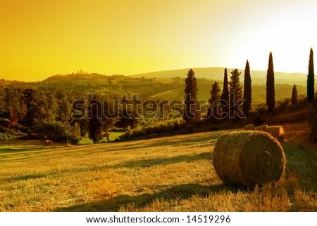 Sunset Tuscany landscape: San Gimignano on the background - stock photo