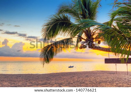 Sunset under tropical coconut palm tree in Thailand - stock photo