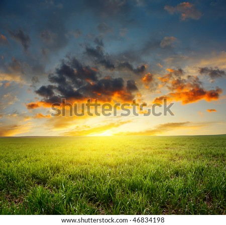 Sunset with clouds over meadow with green grass