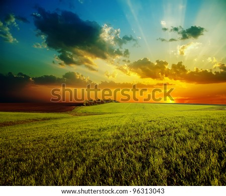 sunset with dramatic sky over agricultural green field - stock photo