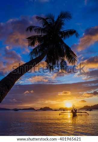 Sunset with palm and boat. Philippines
